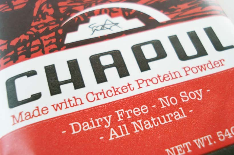 cricket flour protein bar review